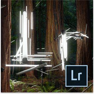 Adobe Photoshop Lightroom 6.0 32 Bit Französisch Multimedia Vollversion PC / Mac (DVD)