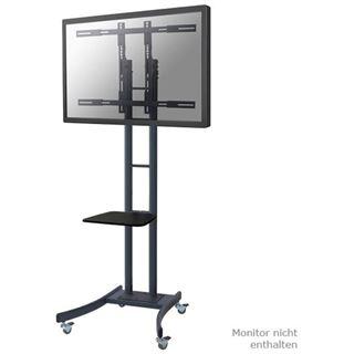 "Newstar Bildschirmwagen LCD/LED/Plasma 37""-85"" Max.125KG"