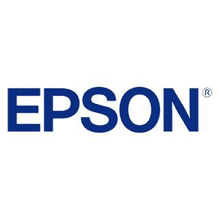 Epson Single Pack schwarz 29 HOME INK