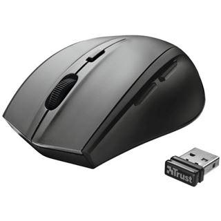 Trust EasyClick Wireless Mini Mouse USB grau (kabellos)