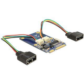 Delock MiniPCIe I/O PCIe full size 2 x USB 2.0